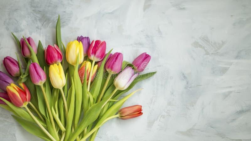Spring tulips bouquet stock photos