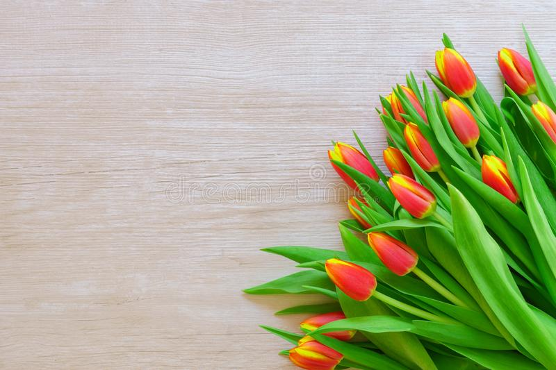 Spring tulips flowers on a old wooden background stock photo