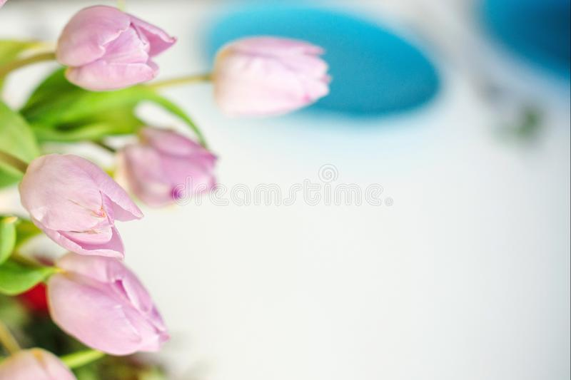 Spring tulips in a vase on a kitchen table. Good beginning of the day. Morning mood. Spring concept. Sunny spring morning with. Flowers. Copy space stock photography