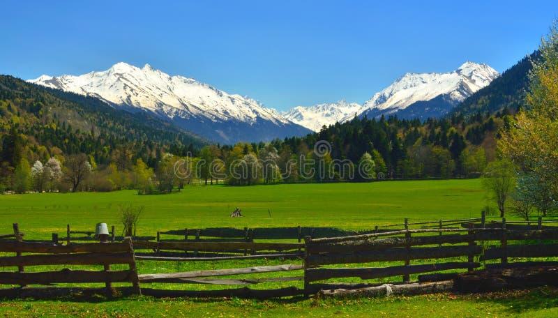 Spring Valley стоковые изображения