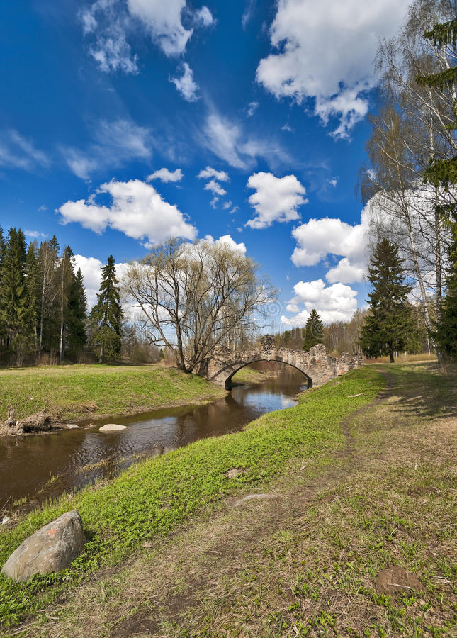 Download Spring Vertical Stock Photo - Image: 18992160