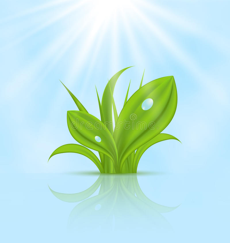 Spring wallpaper with green grass. Illustration spring wallpaper with green grass - vector vector illustration