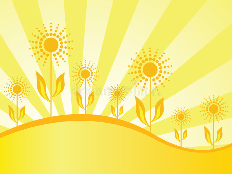 Spring wallpaper with sunflowers stock photo