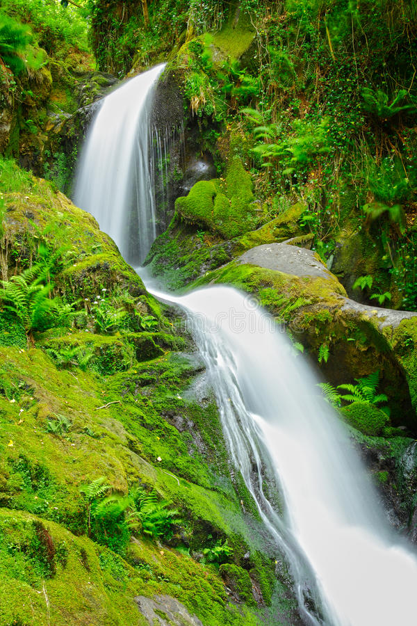 Spring water waterfall. Spa like forest spring water waterfall stock image