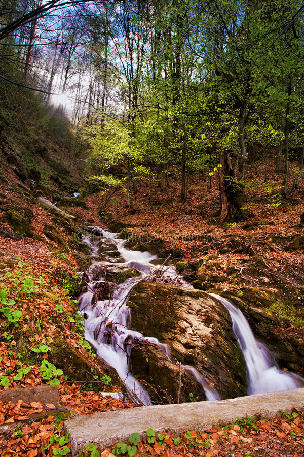 Spring waterfall and forest stream in mountains. Spring waterfall and forest stream mountains stock photos