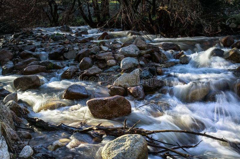 Spring waters. River stream in the mountains in spring royalty free stock image