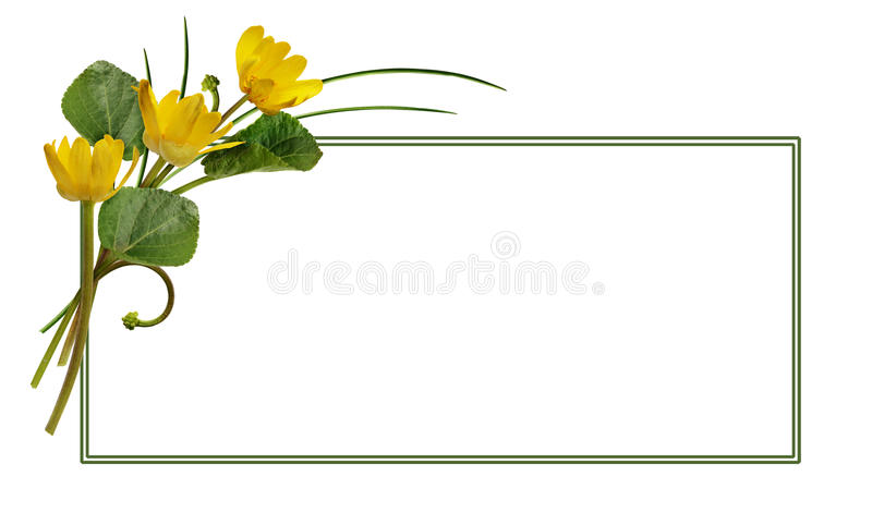Spring wild flowers and a frame stock image