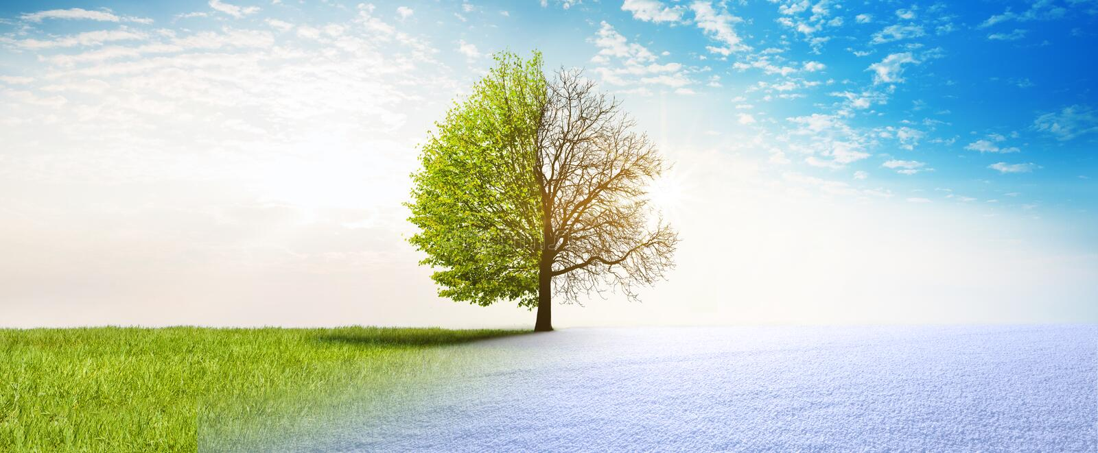 Spring winter change royalty free illustration