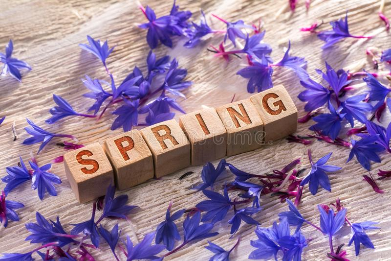 Spring on the wooden cubes. Spring written on the wooden cubes with blue flowers on white wood stock images