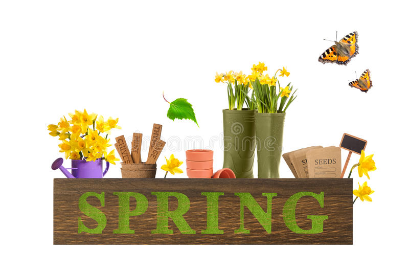 Download Spring stock photo. Image of letters, packets, seeds - 70406318