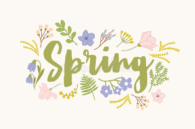 Spring word handwritten with elegant cursive calligraphic font and surrounded by beautiful blooming flowers and leaves. Gorgeous seasonal lettering isolated on royalty free illustration