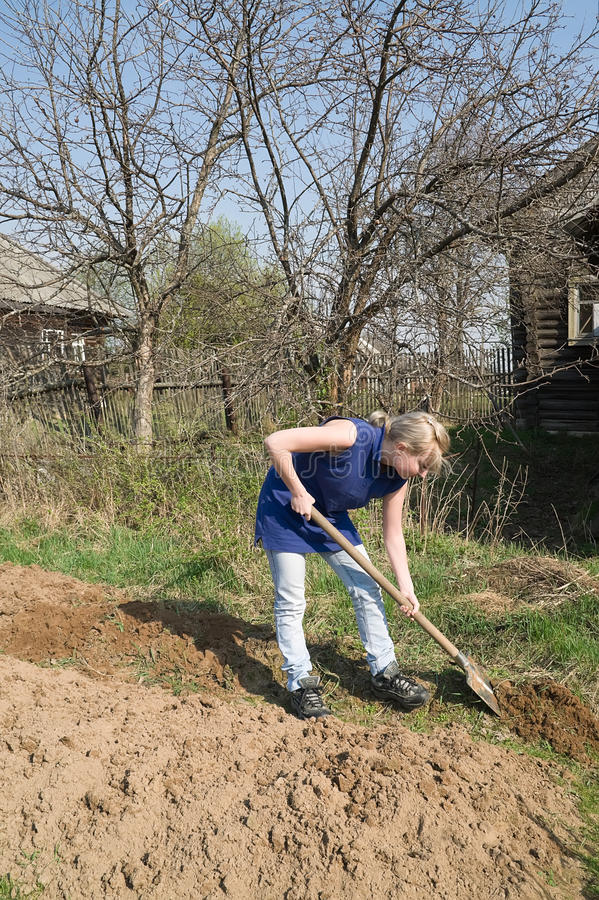 Spring works in the village. Girl dig in the garden for planting stock photography