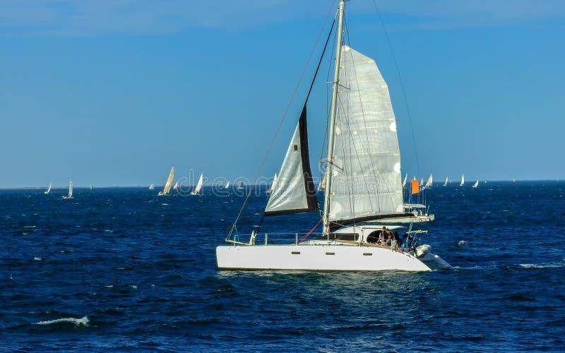 Springa för segelbåtar på den söndag eftermiddagen arkivfoto