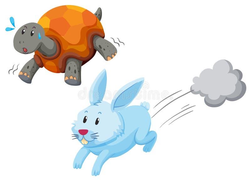 Springa för sköldpadda och för kanin vektor illustrationer