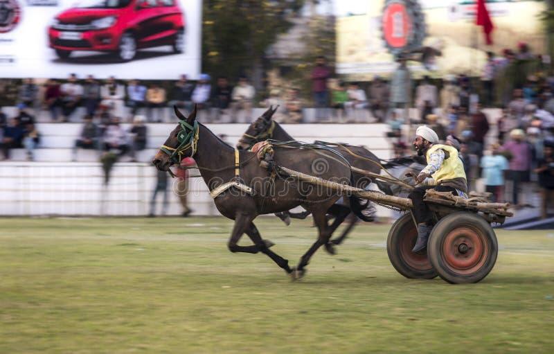 Springa för vagn royaltyfri fotografi