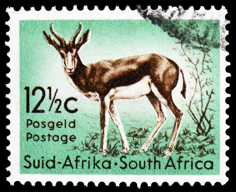 Springbok Antidorcas marsupialis, Definitive Issue - Decimal Issue serie, circa 1961. MOSCOW, RUSSIA - MARCH 23, 2019: Postage stamp printed in South Africa stock photo