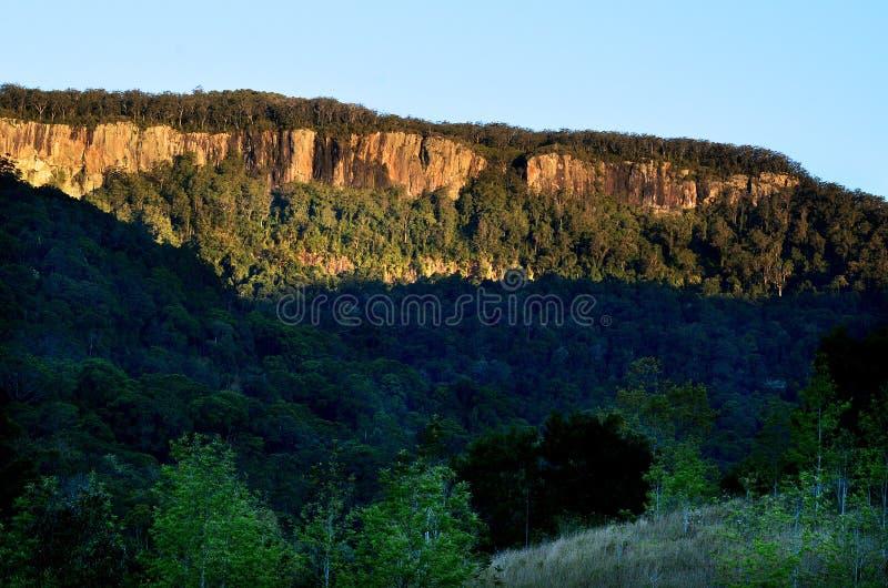 Springbrook National Park - Queensland Australia royalty free stock photography