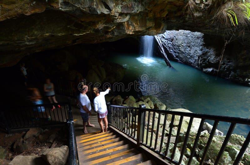 Springbrook park narodowy - Queensland Australia zdjęcie stock