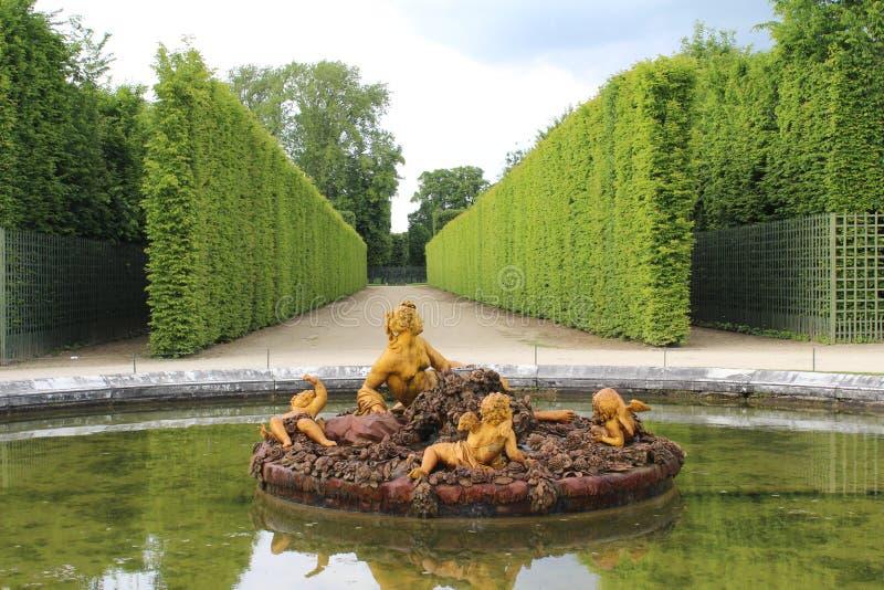 Springbrunn i Versailles fotografering för bildbyråer