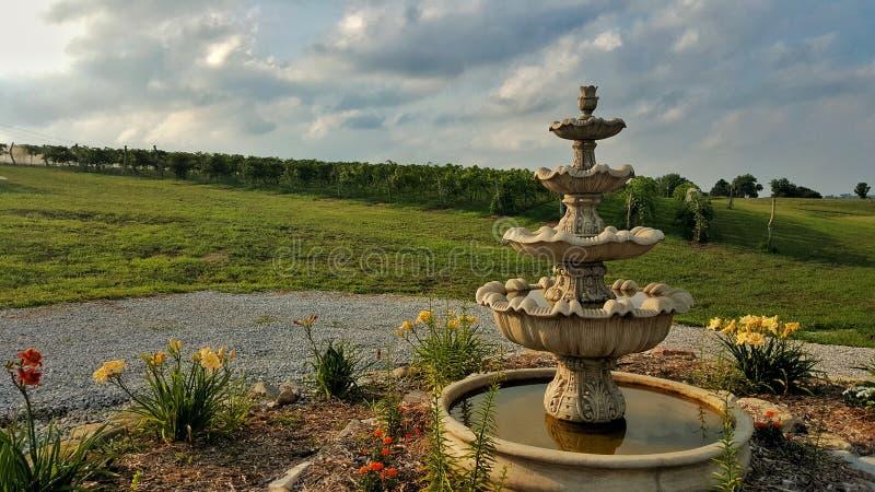 Springbrunn och trädgård utomhus på en vingård i NE royaltyfria foton