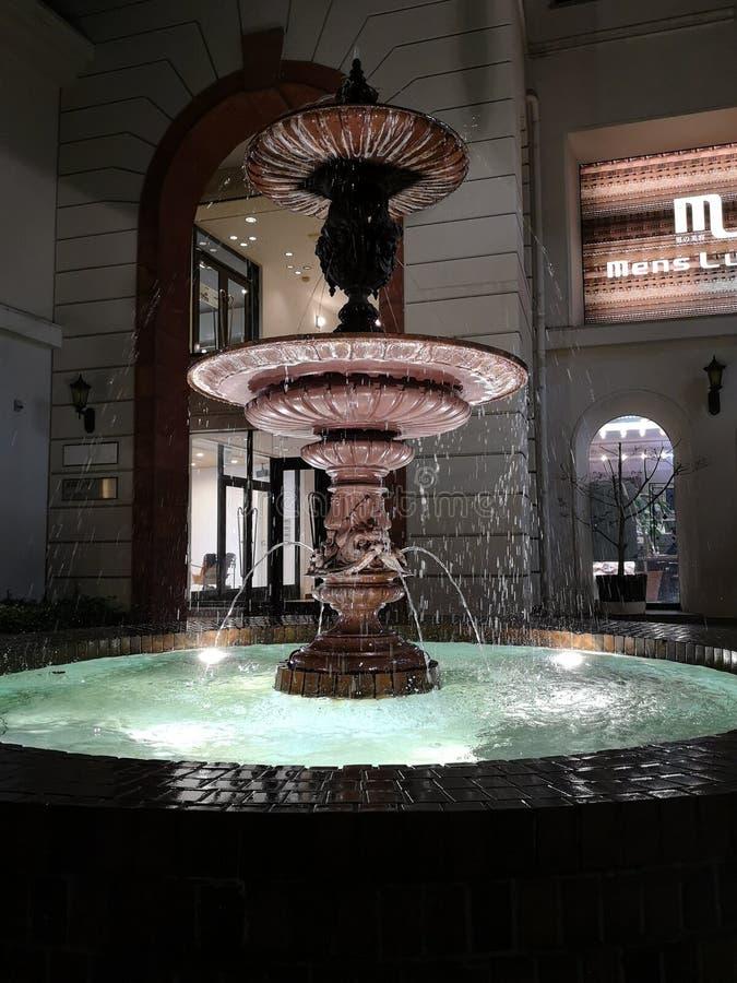 Springbrunn vid natt royaltyfri foto