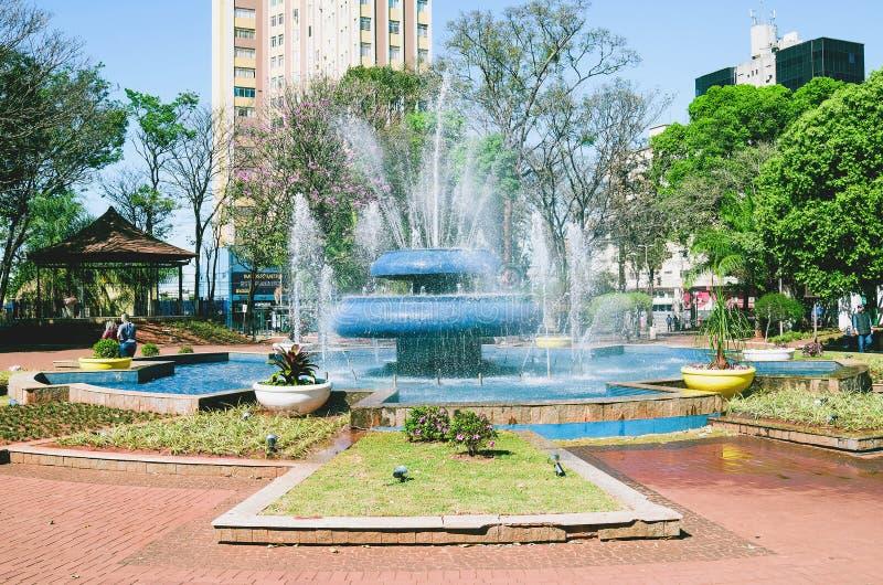 Springbrunnen av den Ary Coelho fyrkanten på Campo stor ms, Brasilien royaltyfri foto