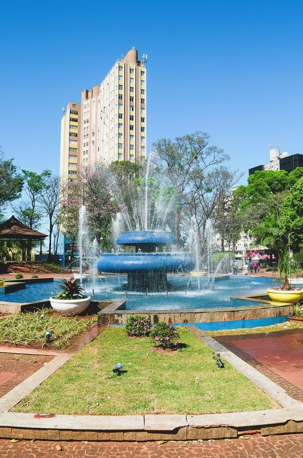 Springbrunnen av den Ary Coelho fyrkanten på Campo stor ms, Brasilien royaltyfria bilder