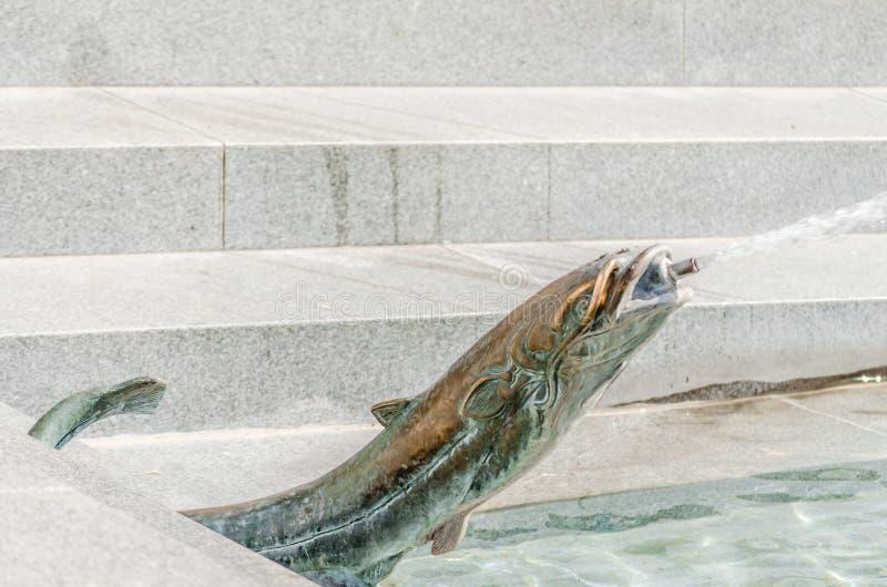 Springbrunnen i staden parkerar Pecs, Ungern, i nedgången royaltyfria bilder
