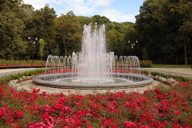 Springbrunnen med röda blommor i sommar parkerar arkivbilder