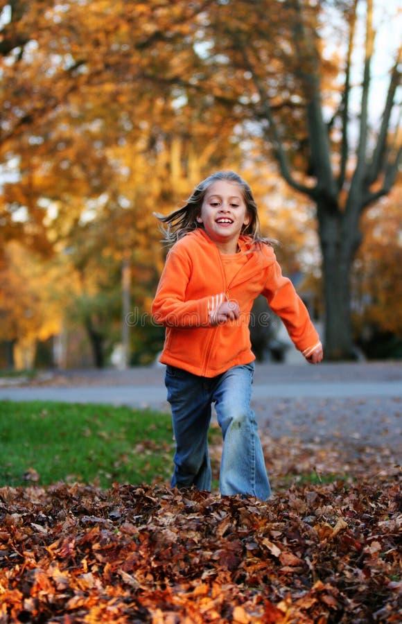 Springen in die Blätter stockfoto