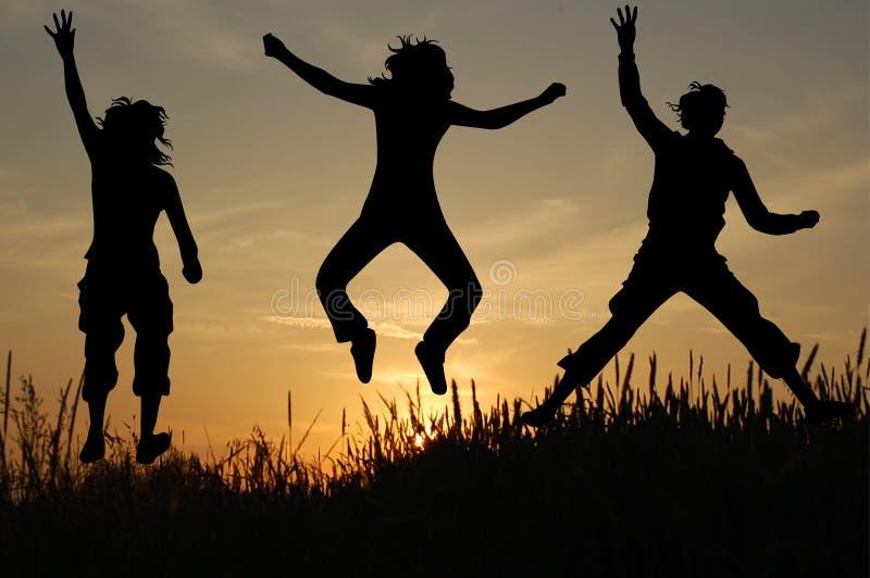 Springen Sie in Natur lizenzfreies stockfoto