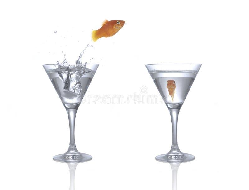 Springende goudvis stock afbeeldingen