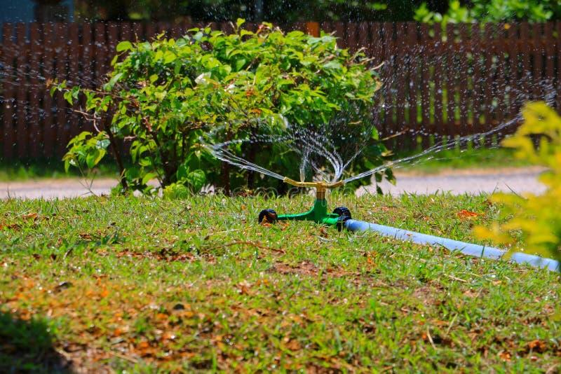 Springer e a água fazem sinal no gramado no verão imagens de stock royalty free