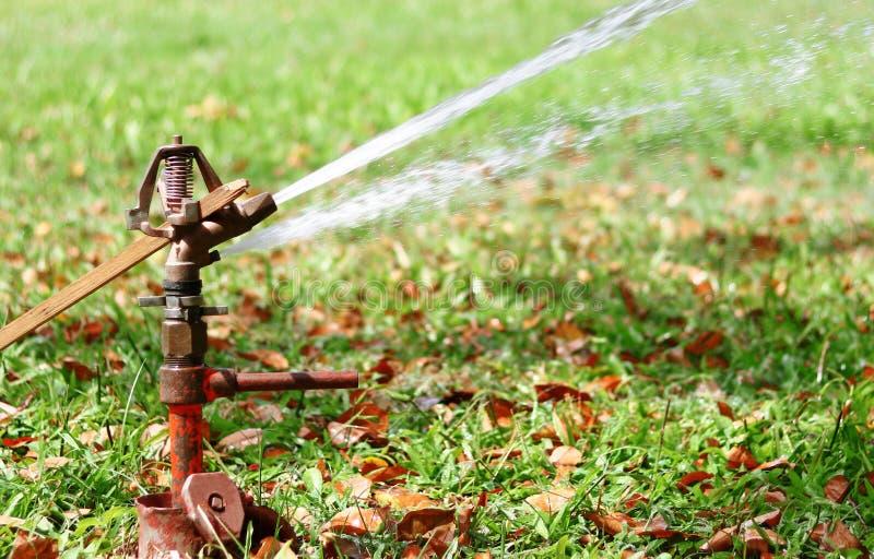 Springer-Wasser lizenzfreie stockbilder