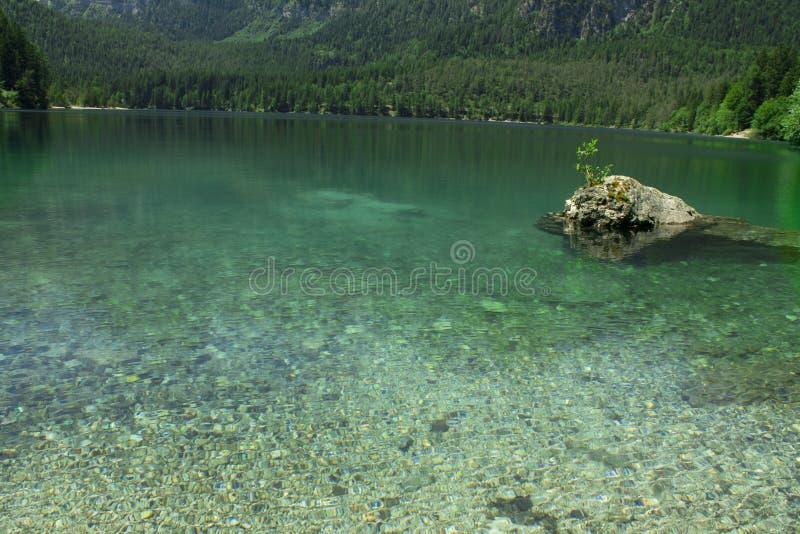 Springl-Ansicht des Tovel Sees, Italien lizenzfreie stockfotografie