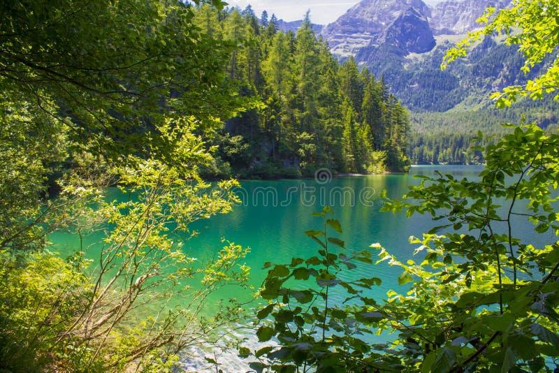 Springl-Ansicht des Tovel Sees, Italien lizenzfreie stockbilder