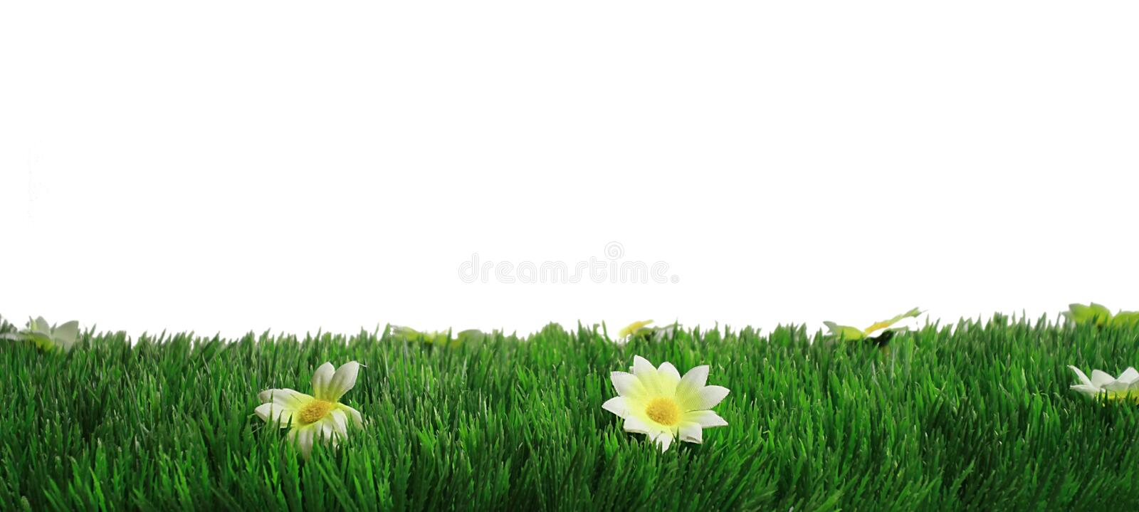 Download Springtime Royalty Free Stock Photography - Image: 18980357