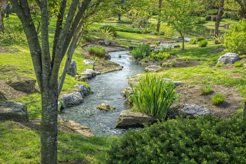 Springtime Brook royalty free stock photo