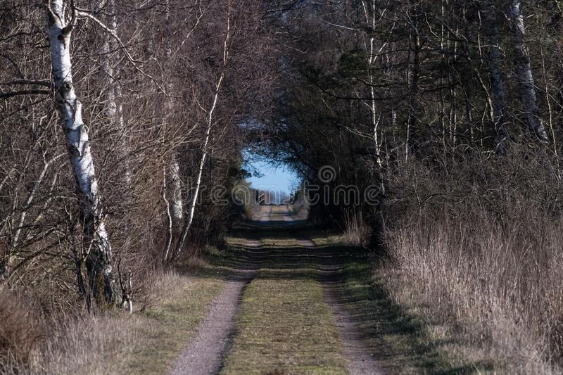 Country road with light in the tunnel royalty free stock photo