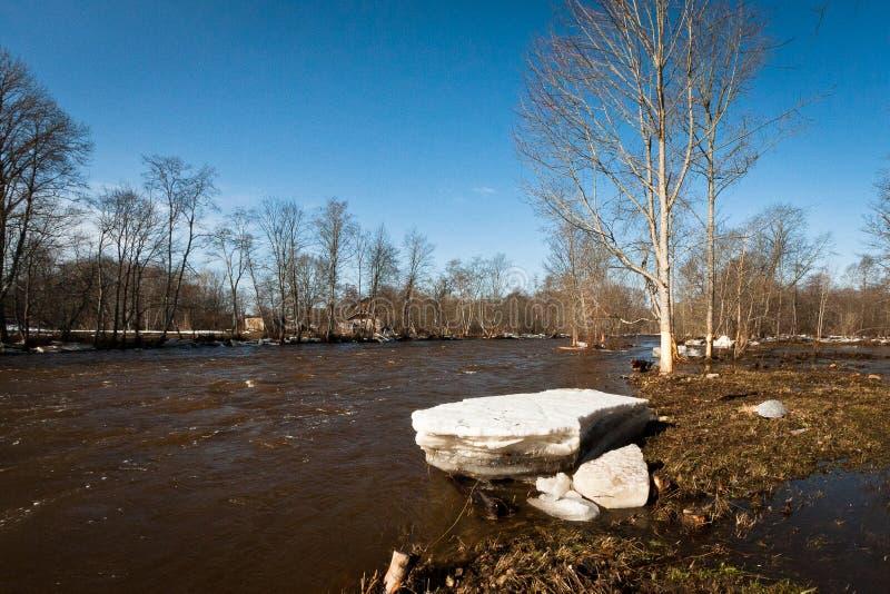Springtime flooding in jugla river. Springtime flooding e in jugla river latvia stock photos