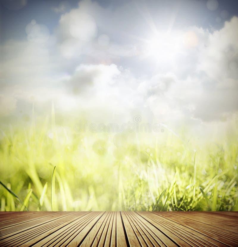 Download Springtime stock photo. Image of color, landscape, green - 32281556