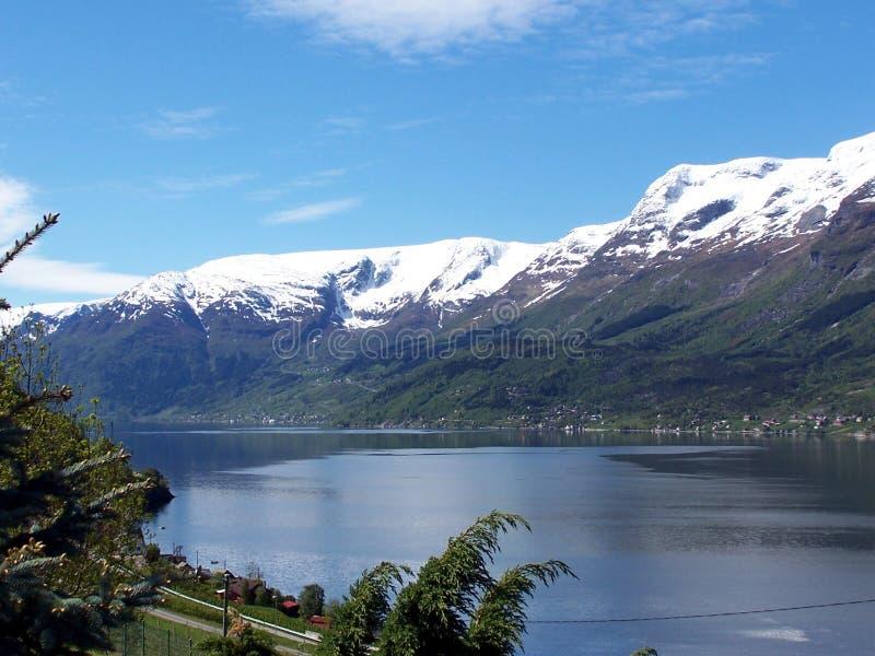 Springtime in Hardanger 2 royalty free stock photo