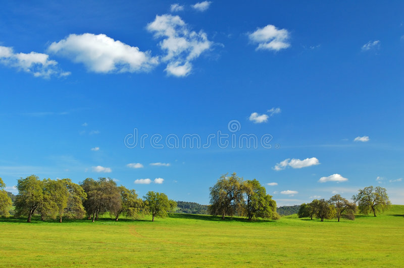 Download Springtime landscape stock image. Image of grass, clouds - 676137