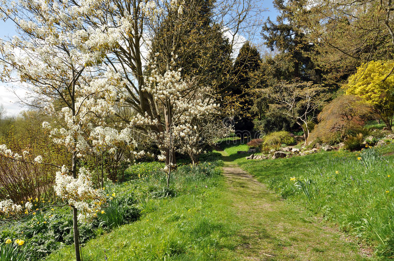 Springtime pathways. A scenic pathway in Worcestershire, England royalty free stock images