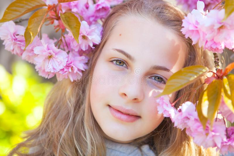 Springtime royalty free stock photography