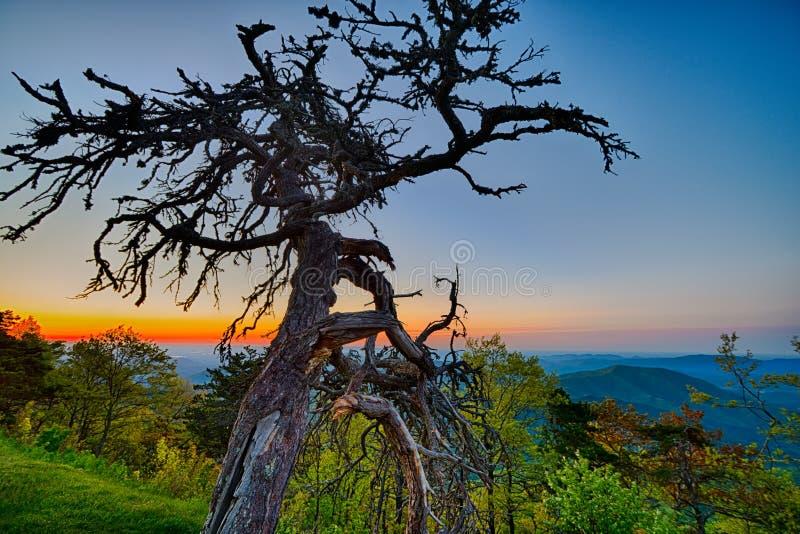 Springtime at Scenic Blue Ridge Parkway Appalachians Smoky Mount. Ains royalty free stock image