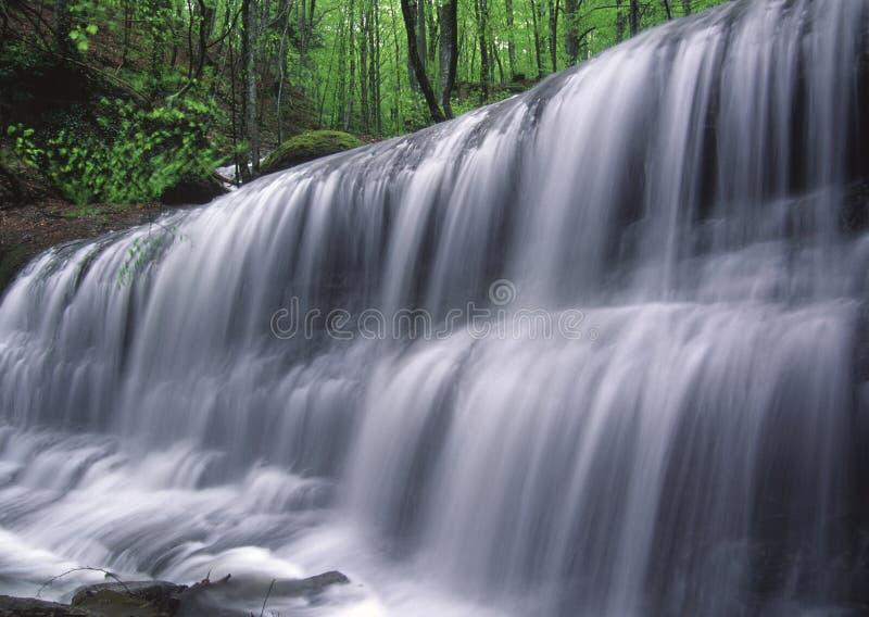 Springtime waterfall stock photography