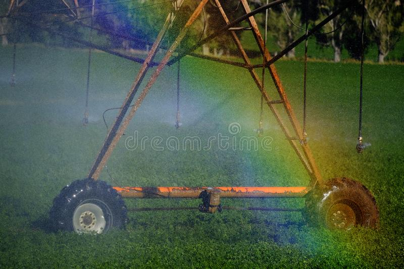 Sprinklers Irrigating Crop Field Farming Grains Lush Green with. Sprinkers irrigating crops green lush field farming grains water spraying rainbow from mist stock photos