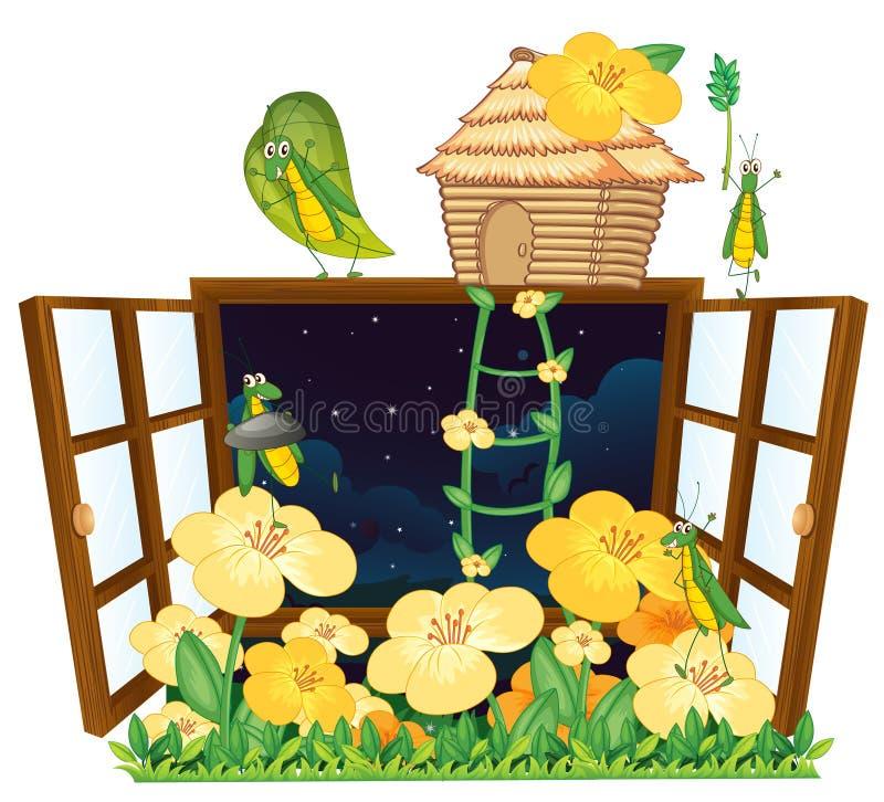 Sprinkhaan, vogelhuis en venster royalty-vrije illustratie