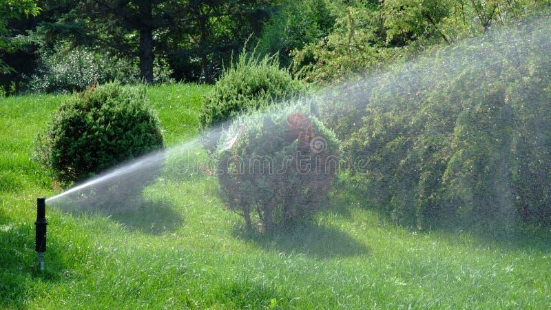 Sprinkler royalty free stock photography